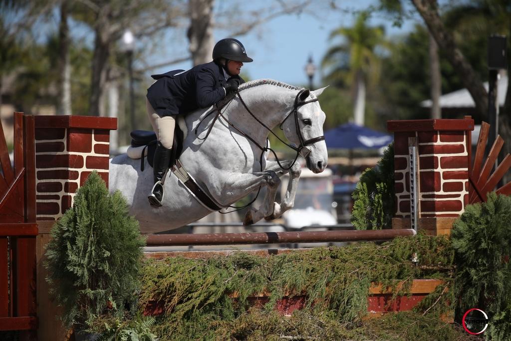 14/02/2018 ; Wellington FL ; Winter Equestrian Festival - Week 6