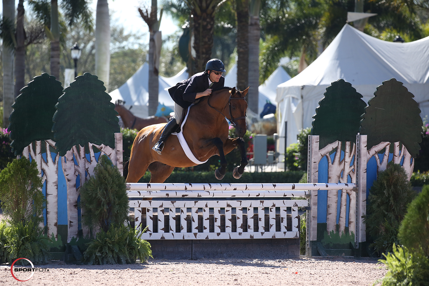 14/02/2018 ; Wellington FL ; Winter Equestrian Festival - Week 6