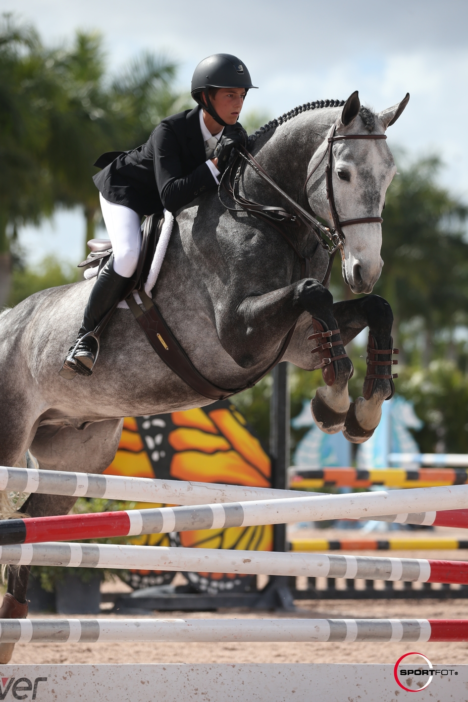 06/02/2019 ; Wellington FL ; Winter Equestrian Festival - Week 5