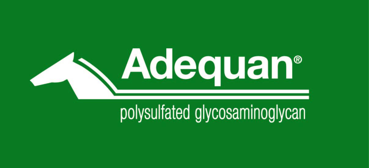 ADEQUAN_Logo_OnGreen