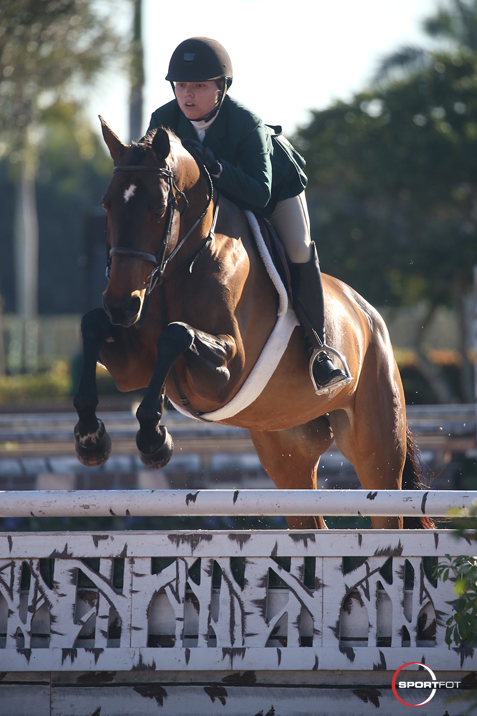 29/01/2020 ; Wellington FL ; Winter Equestrian Festival - Week 4