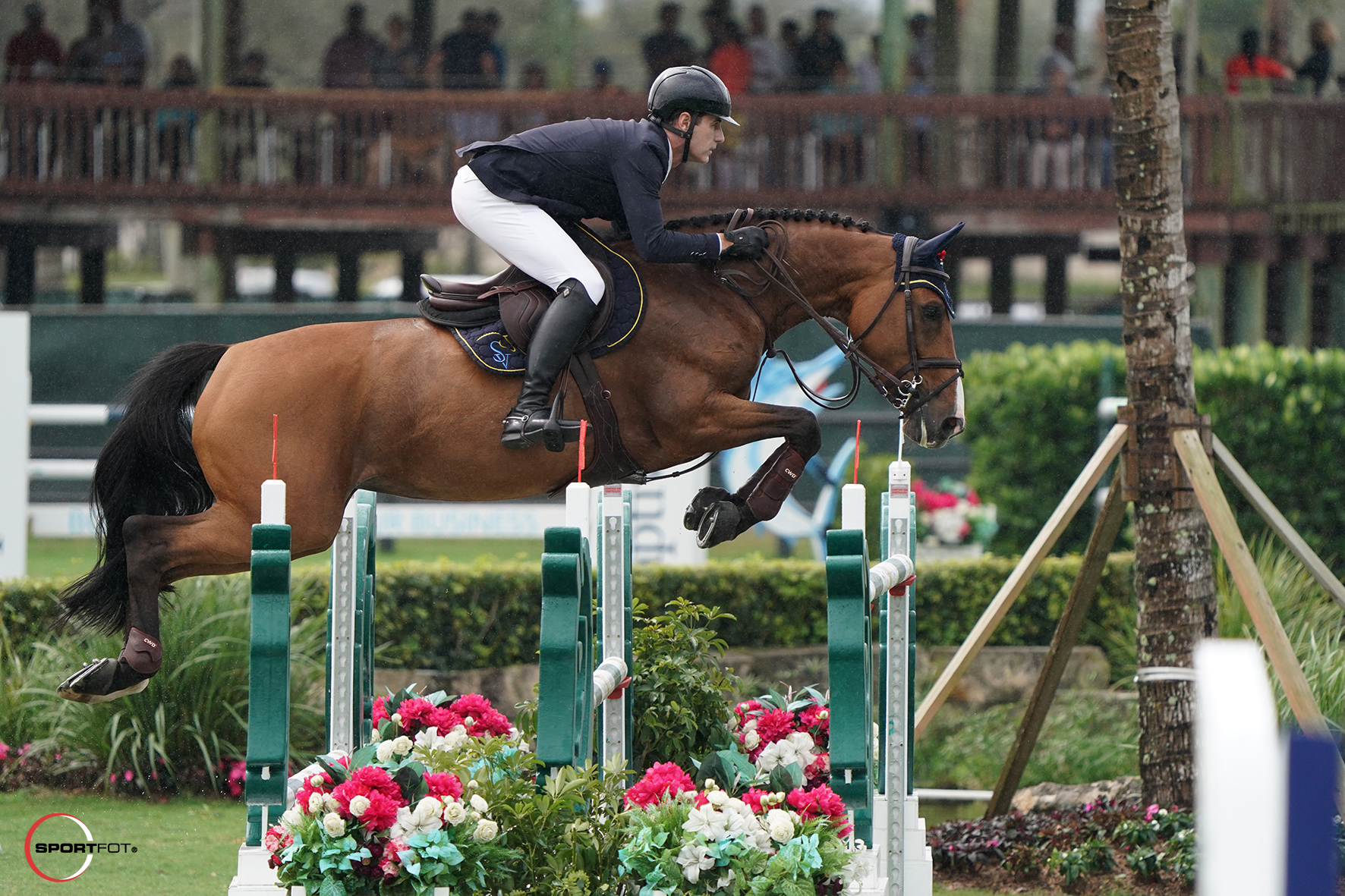 Peter Lutz and Quinta 106 by Sportfot 528_3478