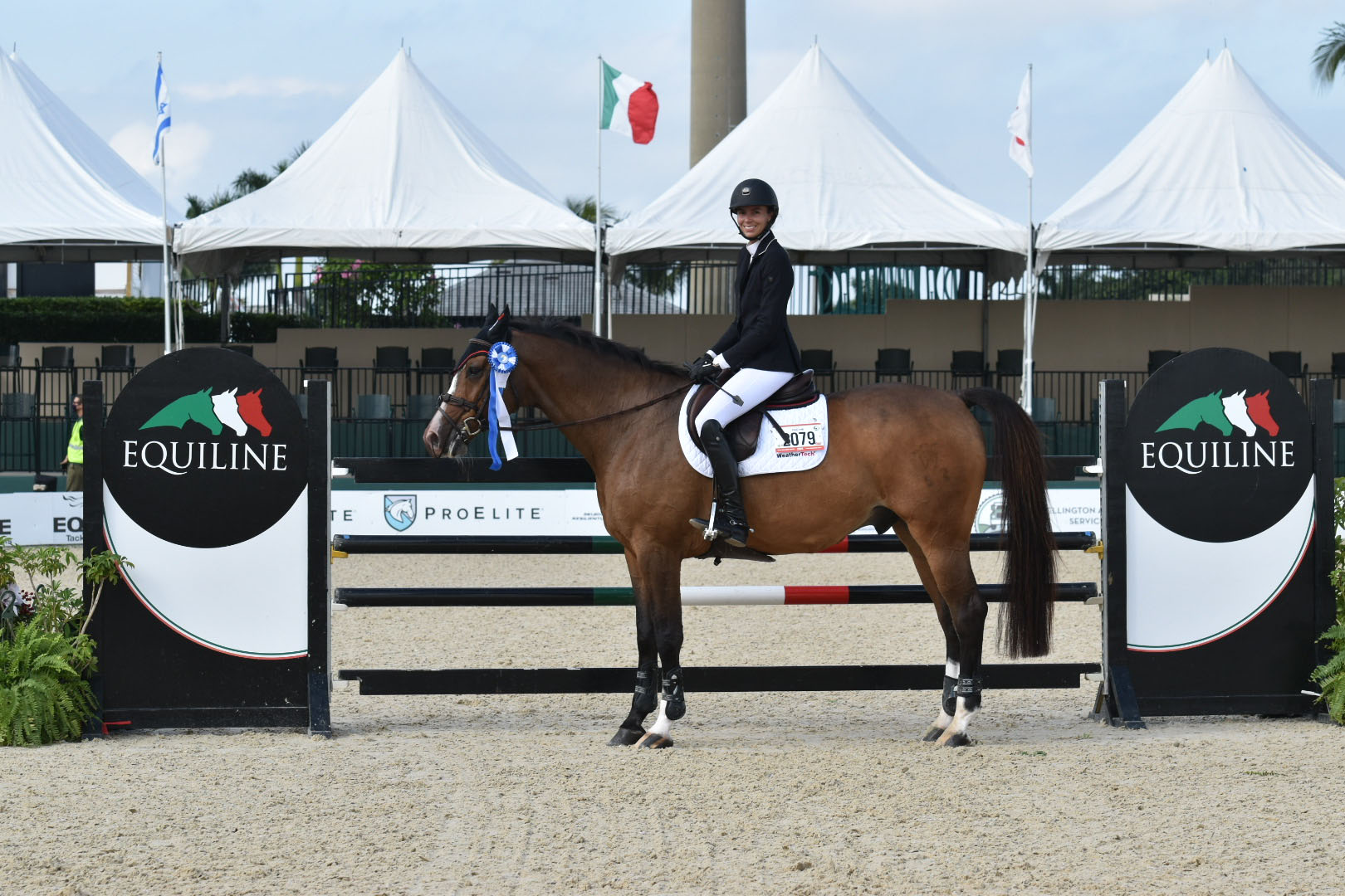 Equiline Med Jr_AO Classic Holiday II