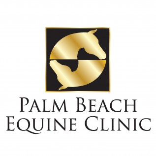 Palm Beach Equine Clinic