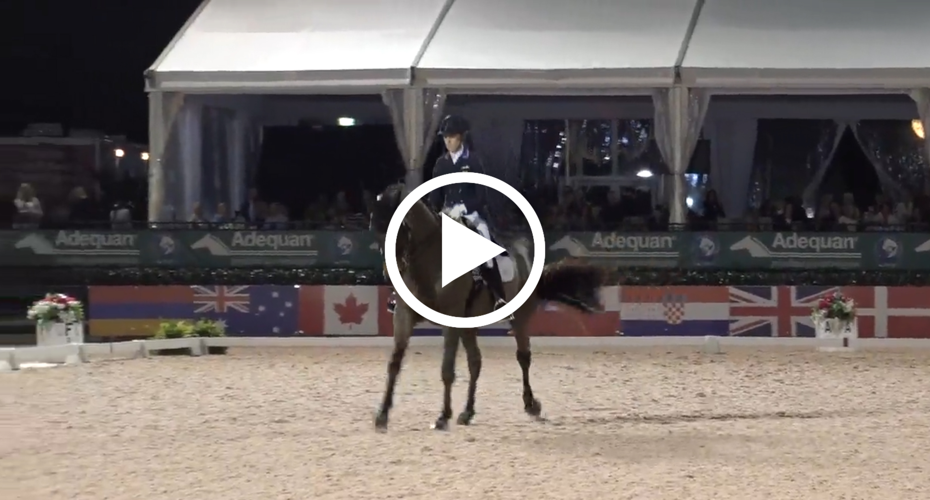 Watch Olivia LaGoy-Weltz's winning test here. Courtesy of Richard's Equine Video.