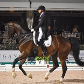 Adequan® Global Dressage Festival