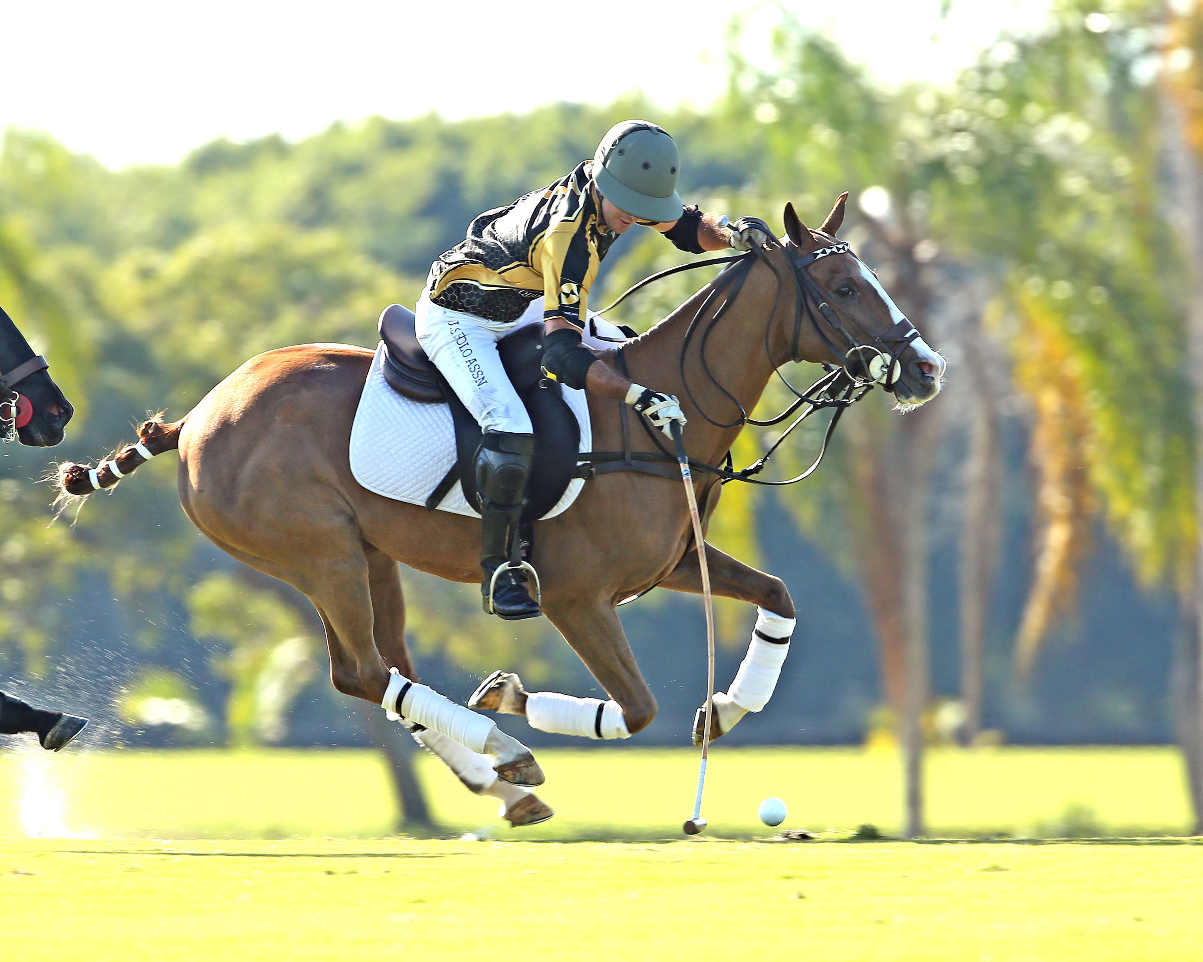 Palm Beach Equine's Costi Caset ©Alex Pacheco