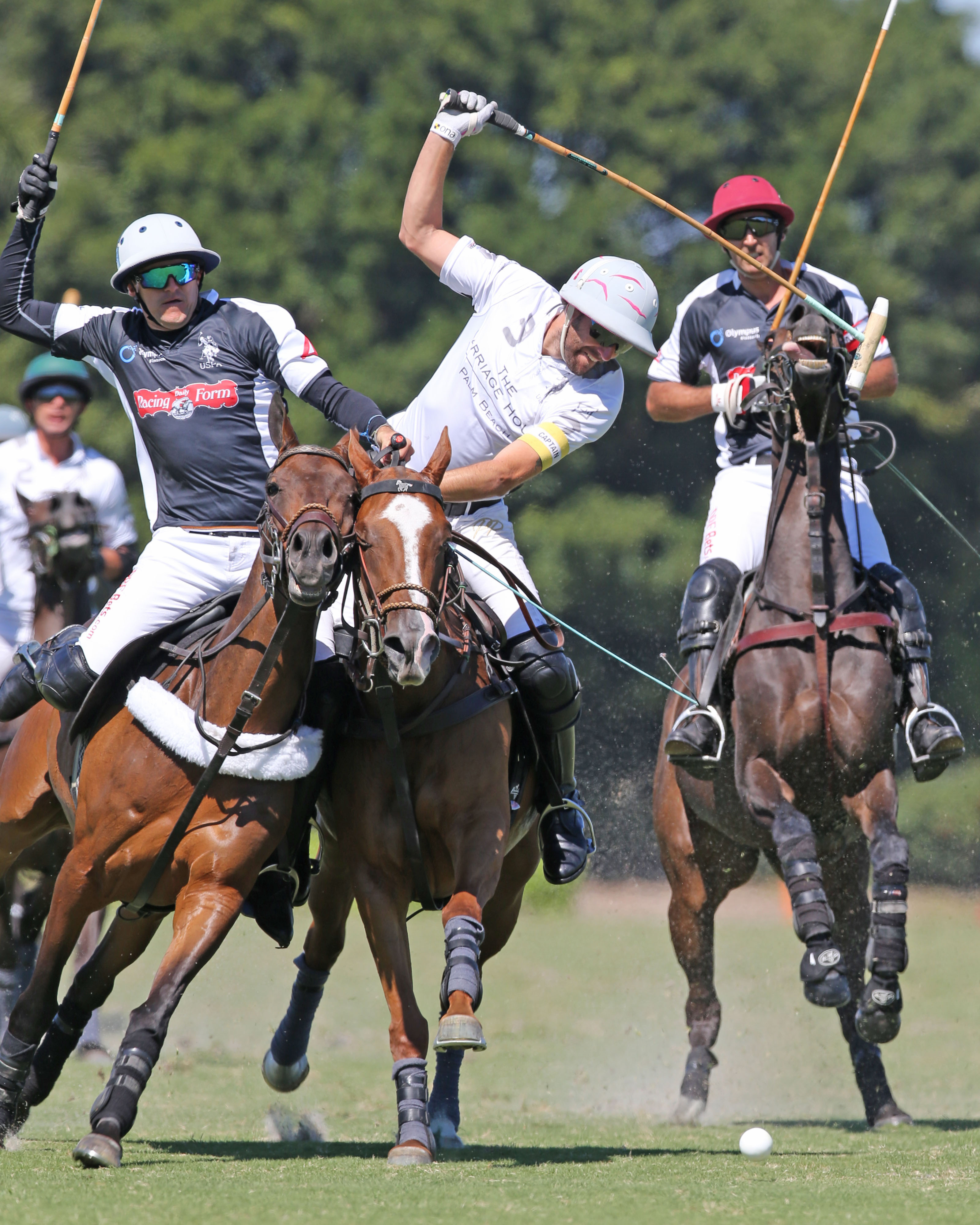 Daily Racing Form and La Indiana will return for the 2020 USPA Gold Cup® continuation. ©Alex Pacheco