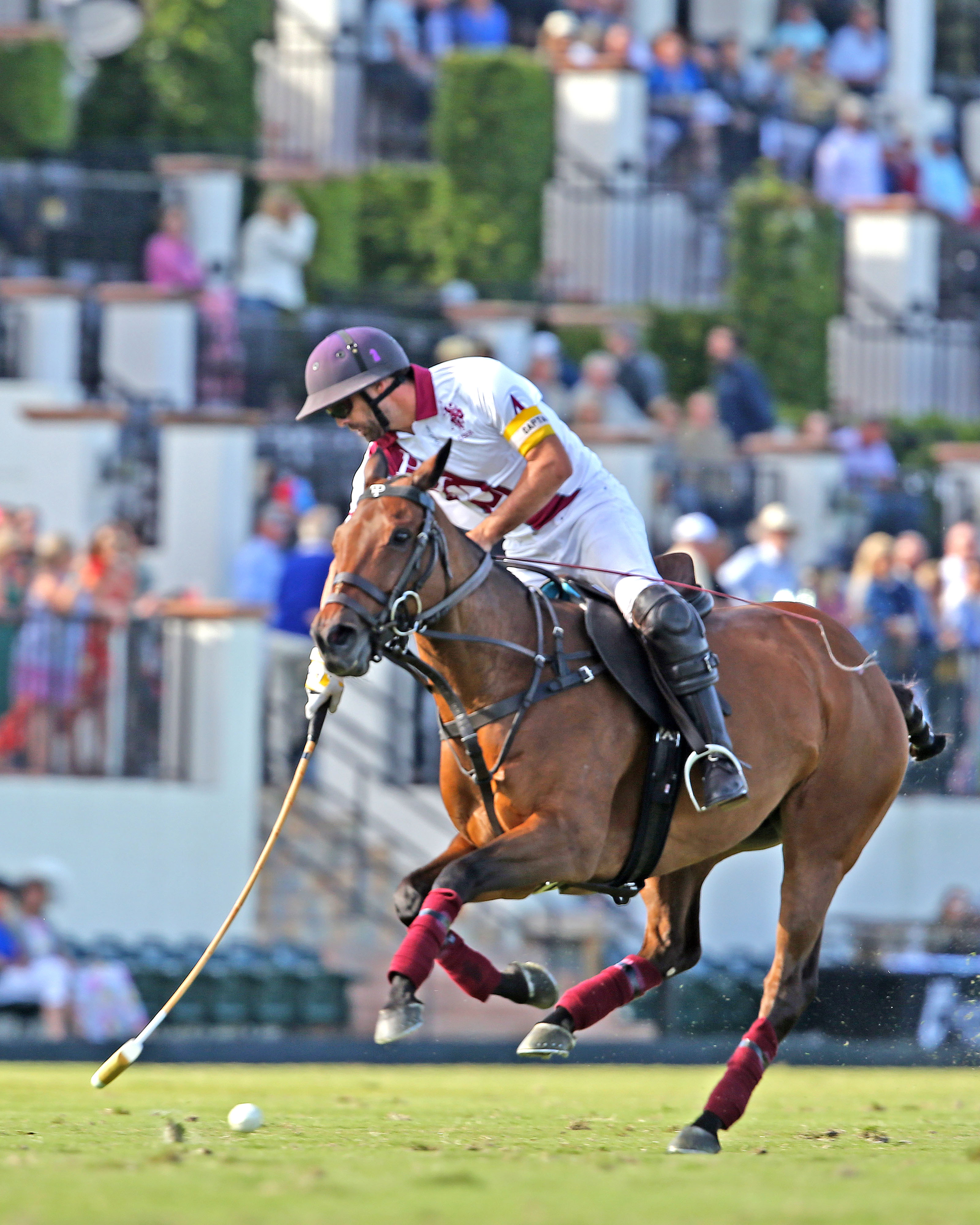 Pilot enters the semifinals of the 2020 USPA Gold Cup® as the only undefeated team. ©Alex Pacheco